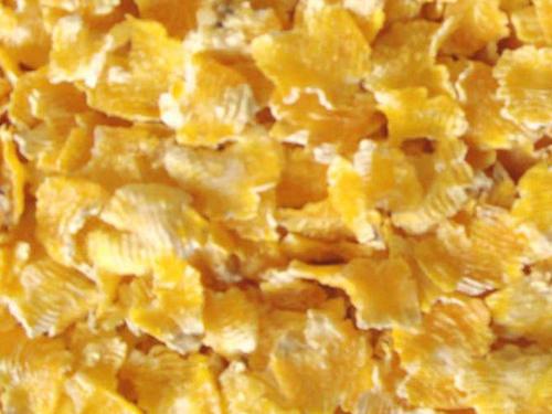 蒸汽压片玉米